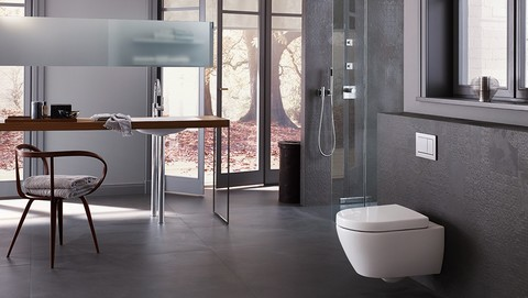 Bathroom with Geberit Omega30 in matte chrome