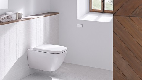 Bathroom with Geberit Omega cover plate and remote flush actuation type 70