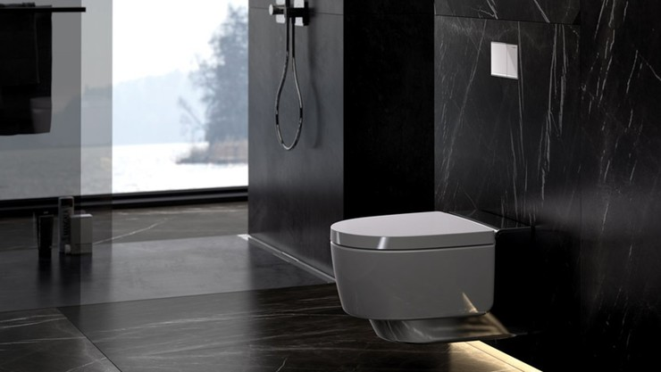 Flush plate, Geberit in-wall toilet system with Sigma50 dual flush actuator